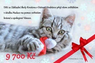 kočka darovací poukaz
